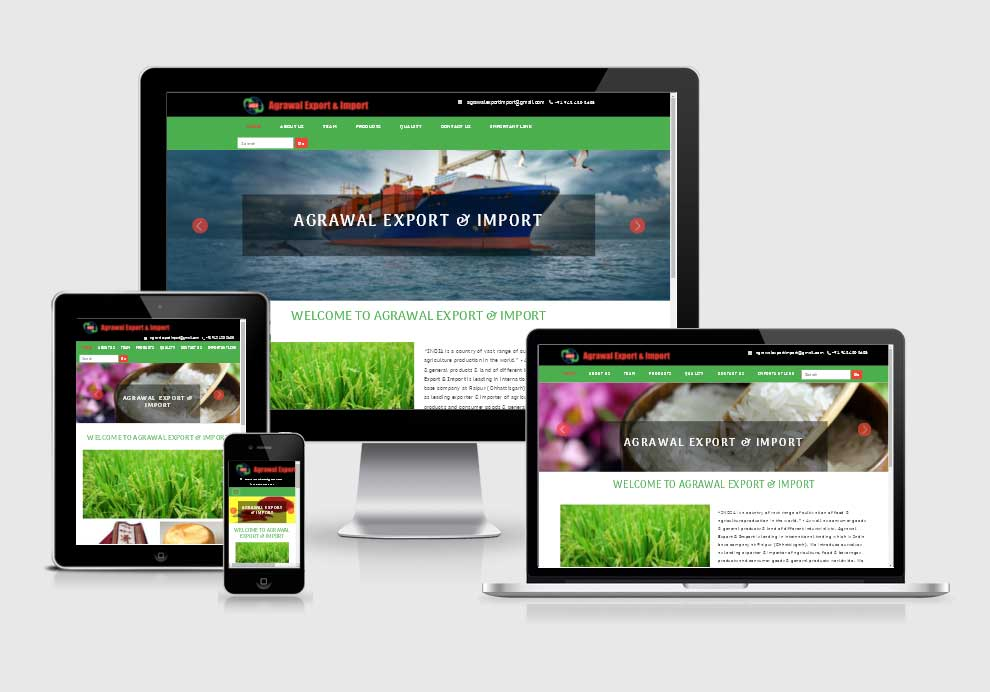 Agrawal Export & Import website design company in raipur